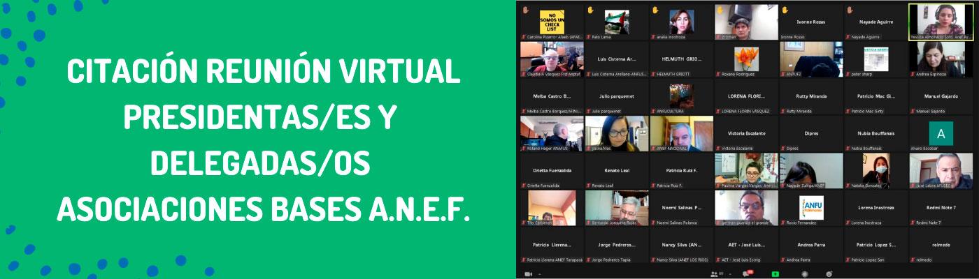 Citación reunión virtual presidentas/es y delegados asociaciones bases ANEF